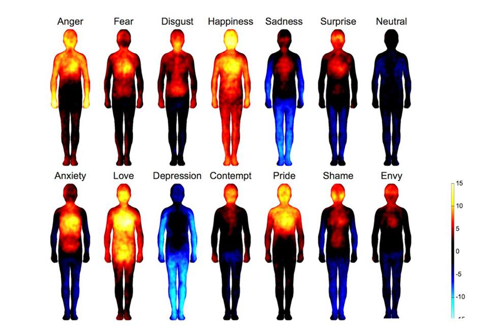 efectele emoțiilor
